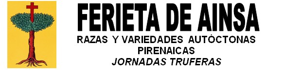 Programa y Cartel Ferieta Ainsa 2012