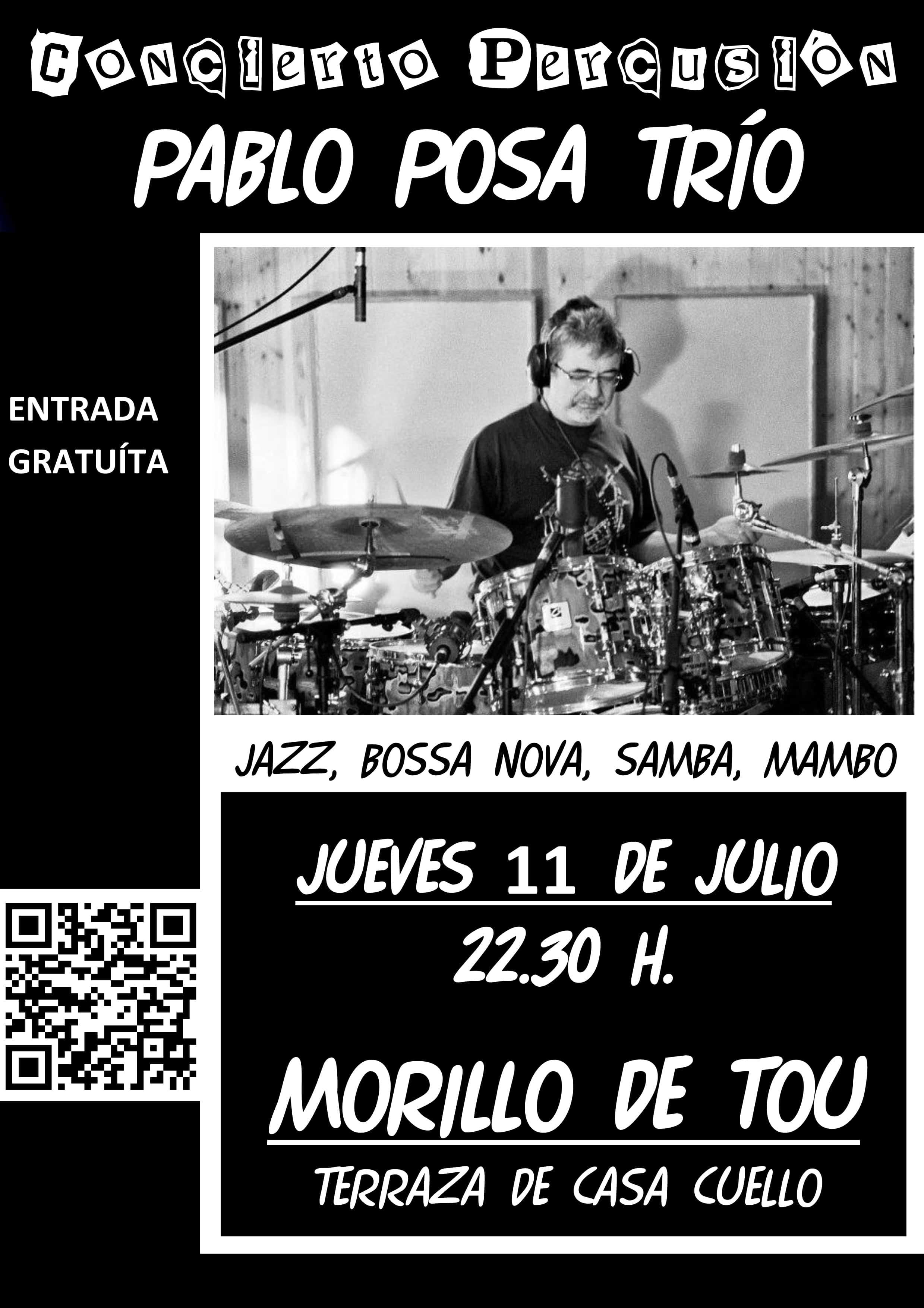 concierto_de_percusion_pablo_posa_trio_bidi_copiar.jpg